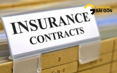 Types of Insurance Contract